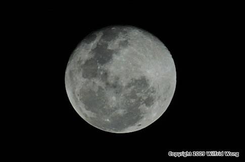 The Moon - ISO200, f/8, 1/800s